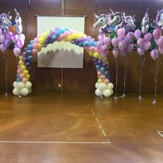 Balloon Decorations Auckland Champers Party Shop 16
