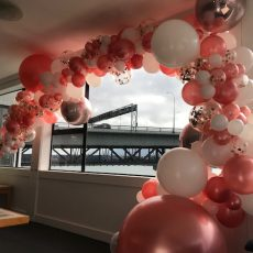Balloon Decorations Auckland Champers Party Shop 2