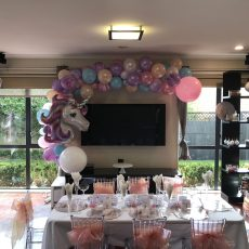 Balloon Decorations Auckland Champers Party Shop 4