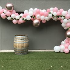 Balloon Decorations Auckland Champers Party Shop 7