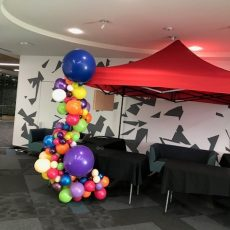 Helium Balloon Garlands Decorations Auckland 03